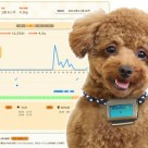 Fujitsu's Wandant dog pedometer reports to a web dashboard via NFC