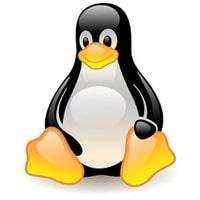 Tux the Linux penguin