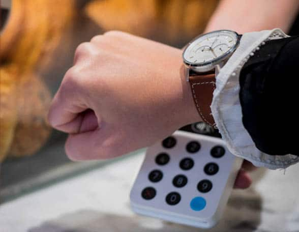 Wrist with watch and payments terminal