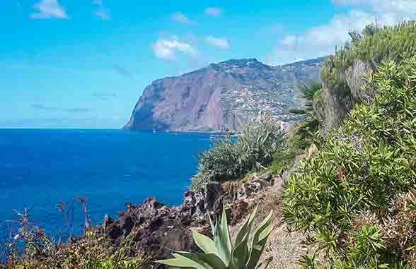 Sea and cliffs of the island of Madeira