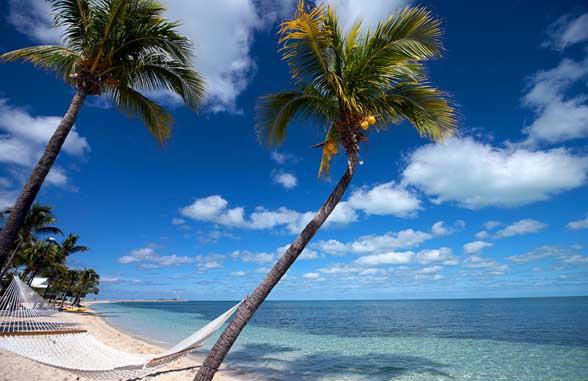 Abacao Bahamas Beach Sand Dollar central bank digital currency pilot