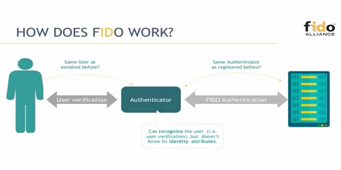 Fido Alliance How does Fido work infographic